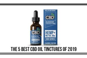 best cbd oil tinctures