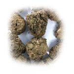 Moon Rocks Bubbba Kush