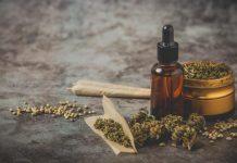hemp herb