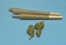 two joints